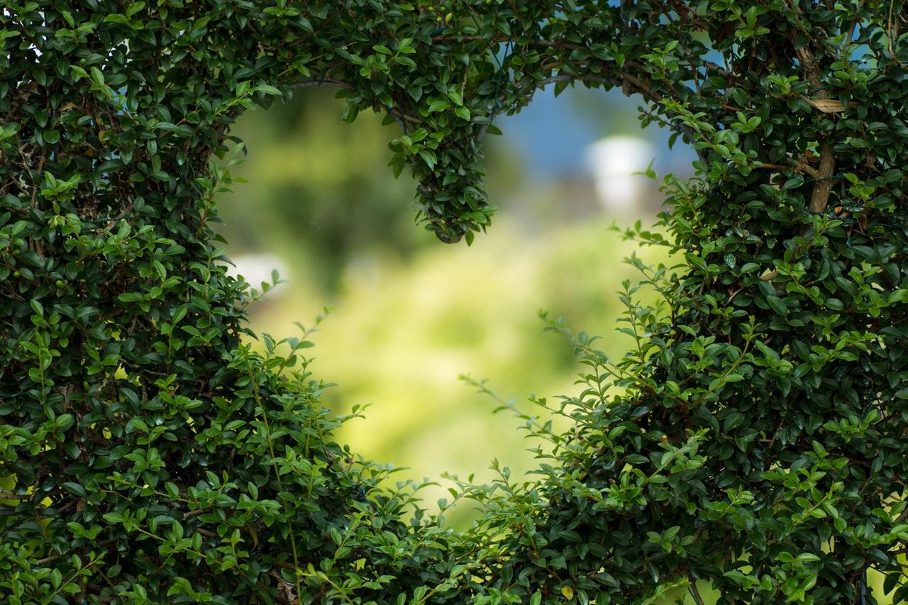 「自分が一番大切」から始まる世界を愛で満たす方法