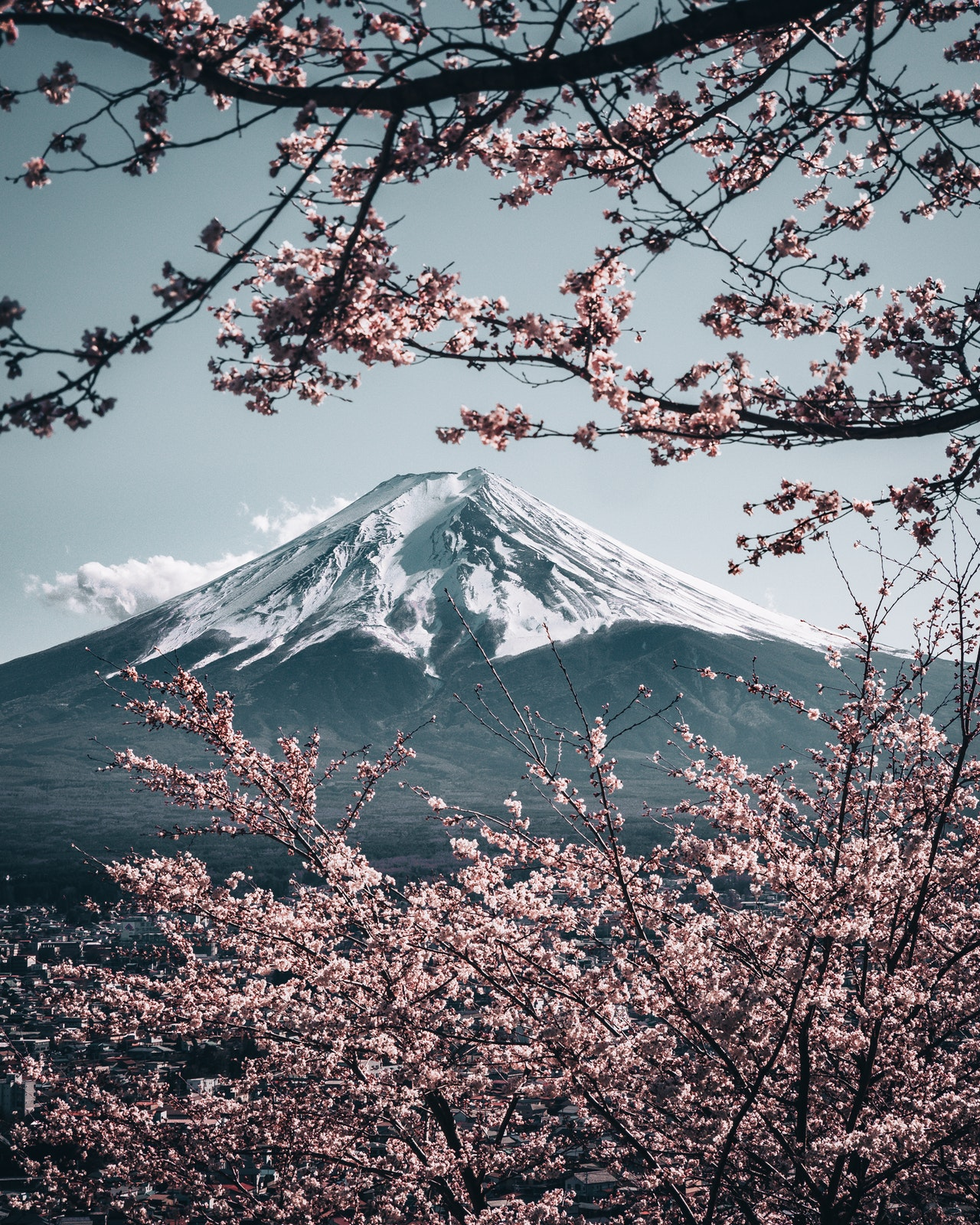 日本の精神成長のベースとは